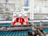 Dla par praca w Niemczech od zaraz bez języka przy pakowaniu keczupów Drezno