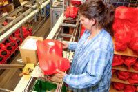 Dla par praca Niemcy bez znajomości języka na produkcji zabawek od zaraz Erfurt